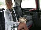 Madura divorciada se liga y se folla al taxista - Divorciadas